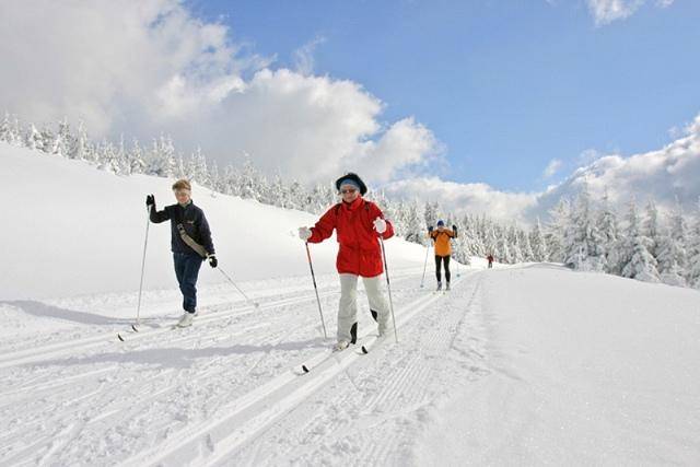 Mit den Langläufern über die Gipfel des Thüringer Waldes (Tourismus GmbH Oberhof)