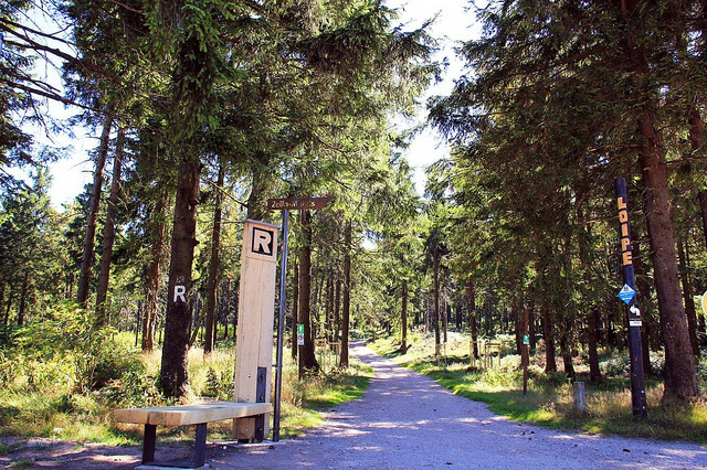 Wandern am Rennsteig mit ... (Tourismus GmbH Oberhof)