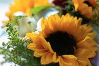 flores_charlene2.jpg