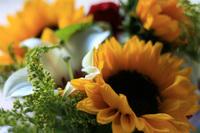flores_charlene4.jpg