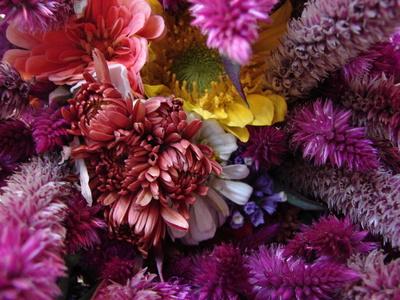 mixedflowers.JPG