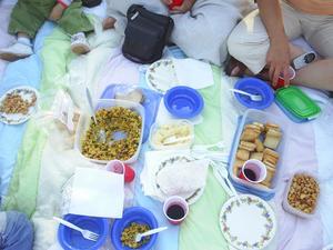 picnicbid1.JPG