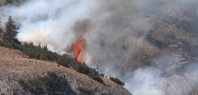 Waldbrand in Tirol