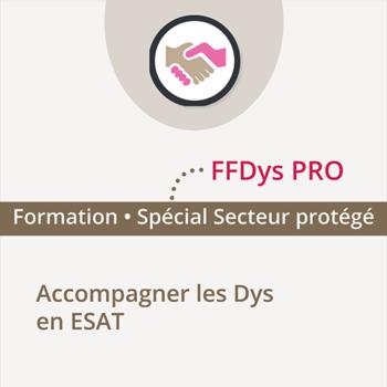 Formation FFDys Pro - 9 Juin 2020 - Paris - Accompagner les DYS en ESAT