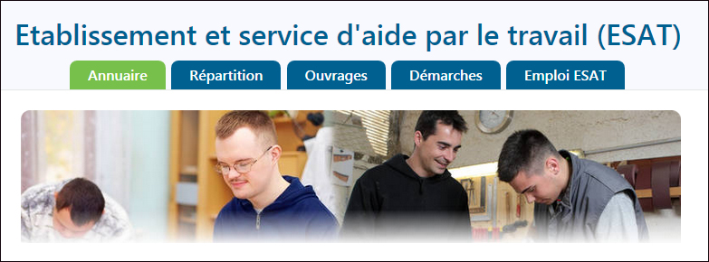 Établissement et Service d'Aide par le Travail (ESAT)