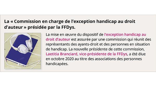 La Commission en charge de l'exception handicap au droit d'auteur présidée par la FFDys.