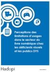 Rapport sur le livre numérique chez les déficients visuels et les publics Dys