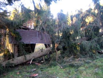 2007 Sturmschäden Kyrill