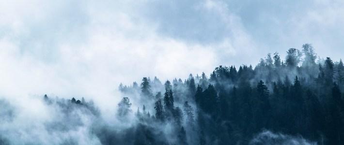 Tipps: Verhalten bei Unwetter mit Starkregen