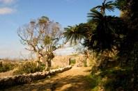 Entrée du Chateau Nakagusuku