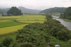 Kumamoto Ken, toujours direction le Nord vers Aso San. Sous ce monticule d'arbre un temple entoure de rizieres.