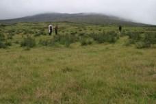 Nous sommes parti. Les paysages font assez Mongolie (jamais mis les pieds, mais c'est l'idee que je m'en fait).