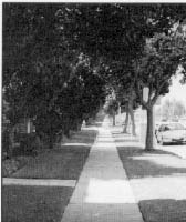 photo of a sidewalk with grass on either side