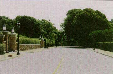 photo of a two-lane residential street in Newport, RI