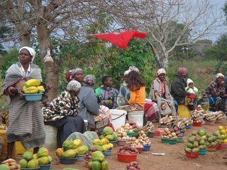 © Photo: Jun Borras. Mozambique 2009