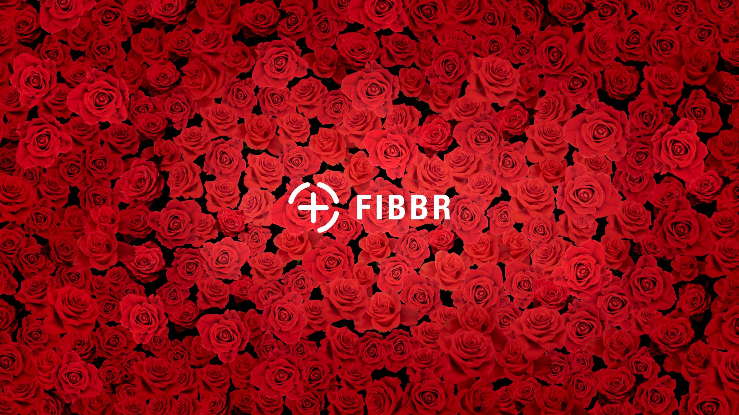 FIBBR slider