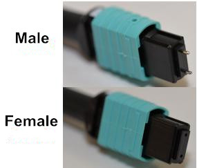 male and female MTP connector in MTP cabling