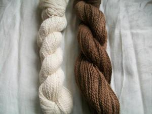 How to Dye Yarn Naturally with Black Walnuts, FiberArtsy.com