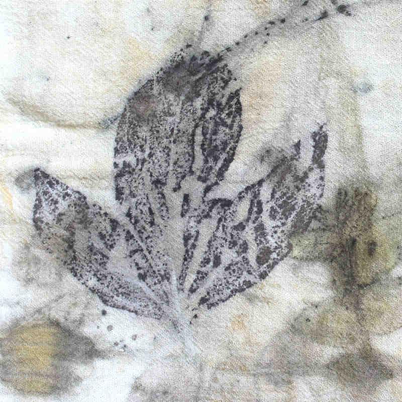 Black Walnut Leaf printed on cotton
