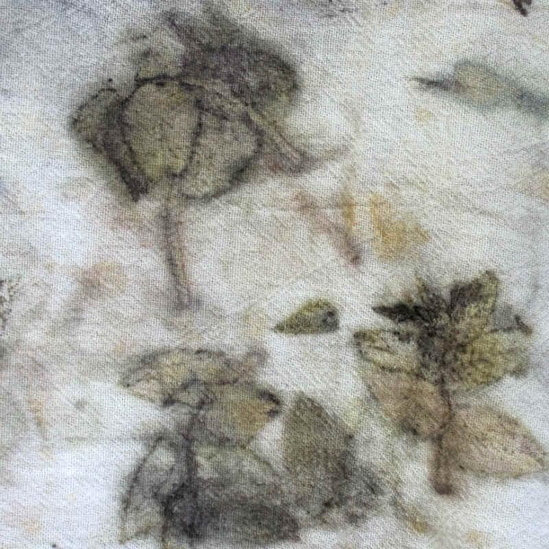 Small black walnut leaves eco printing