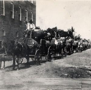 cotton wagons on Washington st