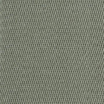 Linen Border Lichen
