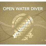 ダイビング 免許 ライセンス