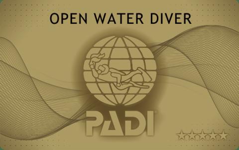 オープンウォーター2017カード