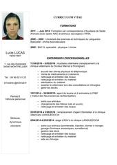 Cv 2016pdf Par Nolwenn Luneau Fichier Pdf
