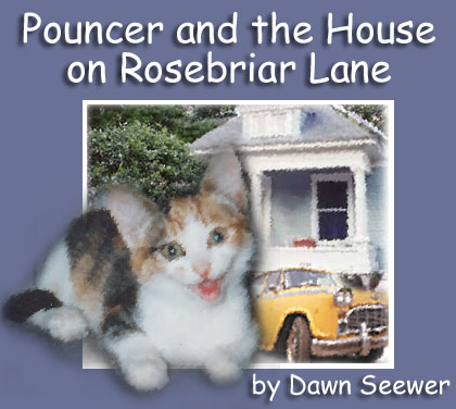 Pouncer and the House on Rosebriar Lane