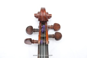 Fiddle scroll and neck, showing the strings wound round the pegs