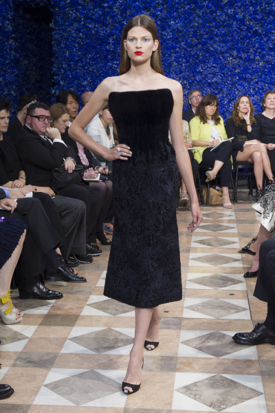 Fall 2012 Couture Dior