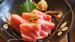 Maguro Guide -Know Your Tuna- 金枪鱼简介