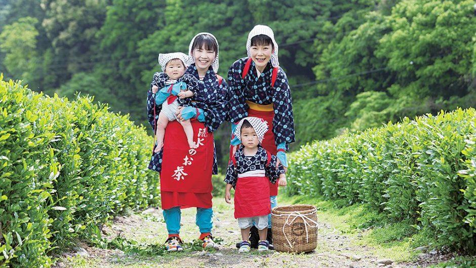 -Maruichi Mizuno Seicha- Greetings from tea plantation in Nihon-Daira!