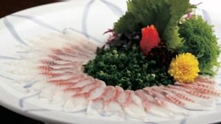 Kentaro Nakamura, TOTOICHI(Fish Specialty Restaurant)