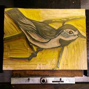 Bachman's Warbler