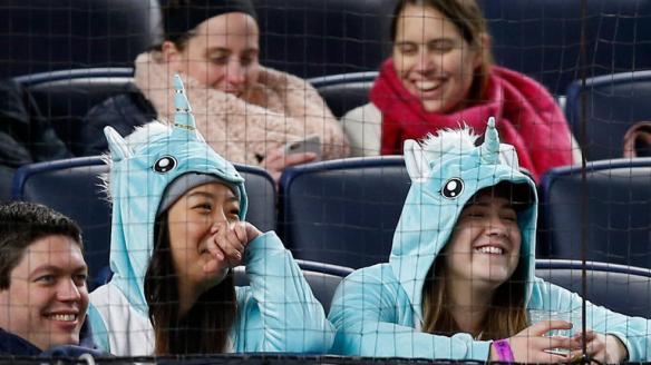 bronx-unicorns