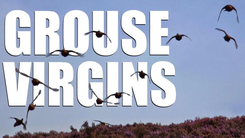 Fieldsports Britain – Grouse virgins