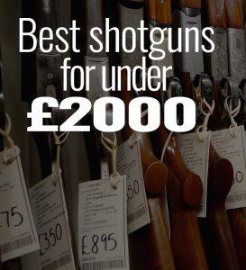 Best shotgun for under £2,000