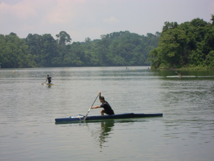 Canoeing at MacRitchie Reservoir Park