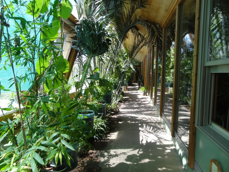 Earthships have glass fronts with greenhouses