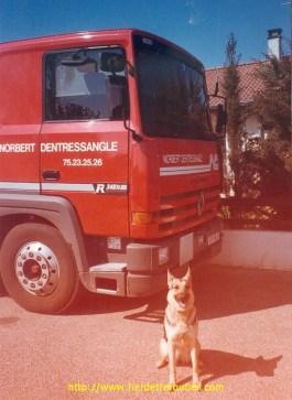 Mon R340, avec mon chien, à la maison.