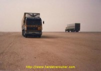 1988 en Arabie