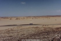 Arabie saoudite...Pas gêné par la circulation