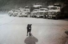 La Flotte au milieu des années 60 avec le gardien sur un nouveau parking!!