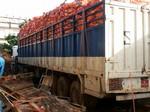 Chargement d'oignons à Dakar