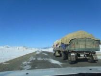 les éleveurs eux continuent de respecter la terre, sous le ciel presque toujours bleu de Mongolie