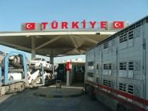 Nos couleurs en Turquie !
