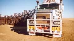 Chargement de ce Mack attelé à une bétaillière