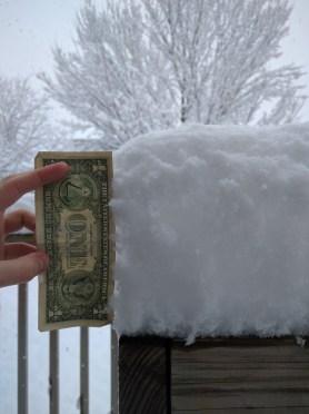 dollar snow